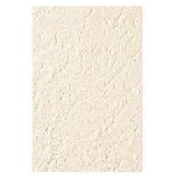 Pedra Natural Branco 33x50