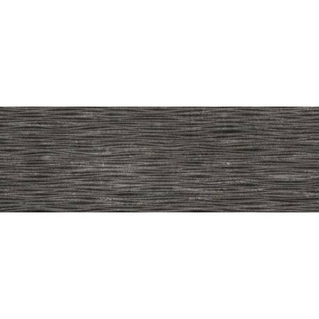 Land Salvia Negro 20x60