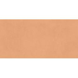 Neo Caramel Rectifié 30X60