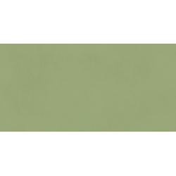 Neo Green 30X60