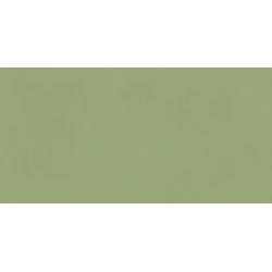 Neo Green Rectifié 30X60
