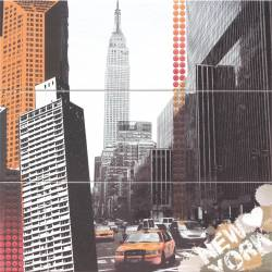 Mural New York 60X60 Iris