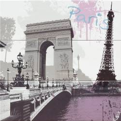 Mural Paris 60X60 Iris
